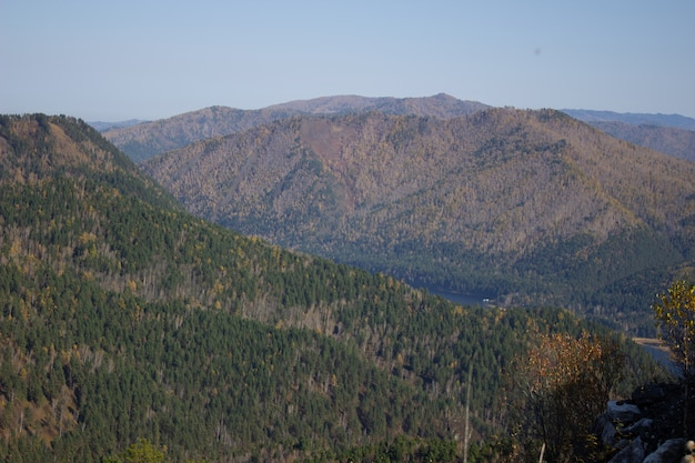 Wielka leśna górska dolina z góry. wędrówki po górach.