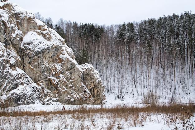 Wielka skała w śniegu. wysokie sosny i zachmurzone niebo. zamarznięte jezioro pod śniegiem