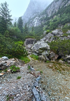 Wielka zimna dolina (velka studena dolina) latem pochmurny widok. wysokie tatry, słowacja.