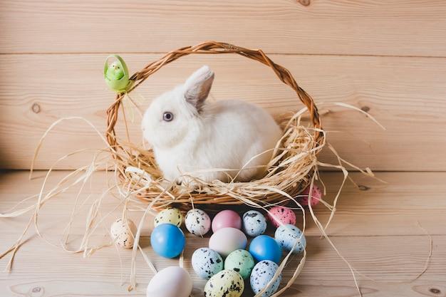 Wielkanocni jajka blisko królika w koszu