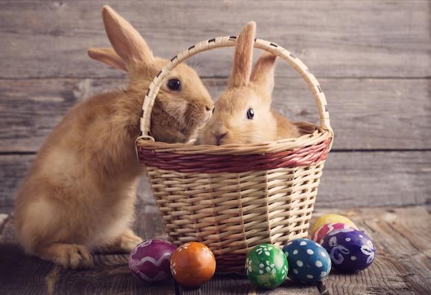 Wielkanocny królik z jajkami na drewnianym tle