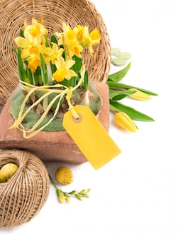 Wielkanocy granica z żółtymi tulipanami i daffodils, tekst przestrzeń