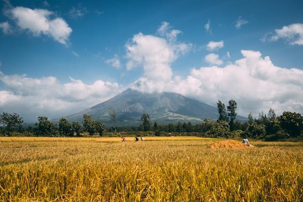 Wielki wulkan mayon na wyspie luzon na filipinach