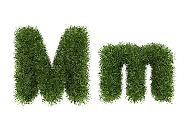 Wielkie i małe litery z trawy
