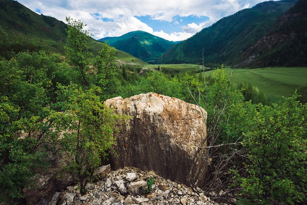 Wielkie kamienie wspaniałych gigantycznych gór z pokrywą lasu w słoneczny dzień.