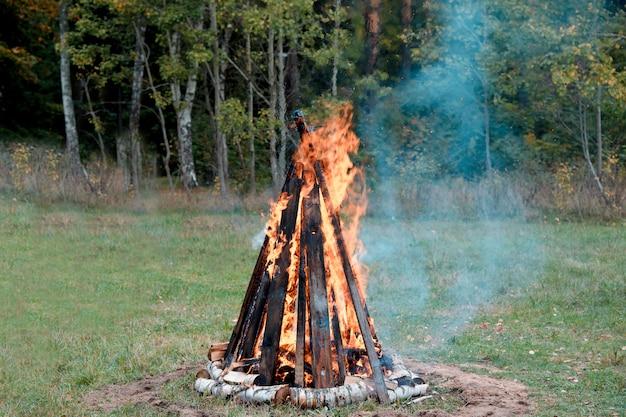 Wielkie płonące ognisko na skraju letniego lasu