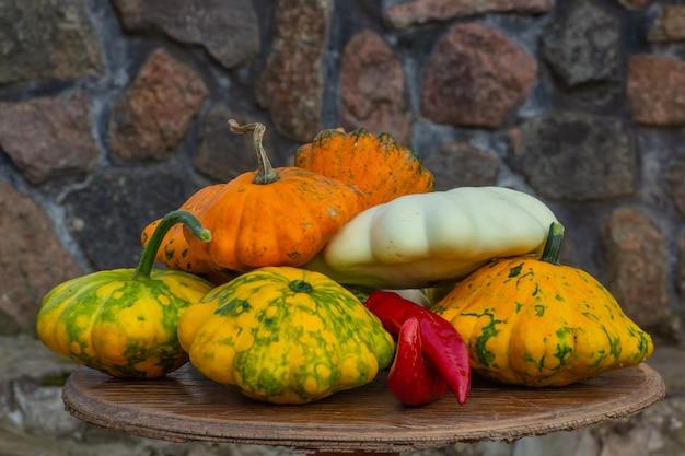 Wielobarwna koncepcja kompozycji dyni jesiennej w święto dziękczynienia lub halloween