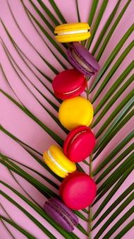Wielobarwne makarony herbatniki ułożone na zbliżenie liści palmy. świąteczne wypieki, słodkie ciasteczka.