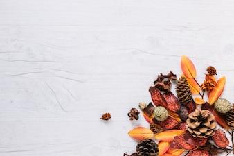 Wielobarwny bukiet liści
