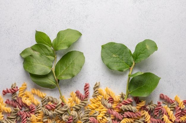 Wielobarwny makaron i gałęzie z zielonymi liśćmi