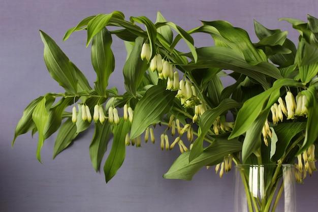 Wielokąta. bukiet zielonych gałęzi z białymi kwiatami jako naturalne tło.