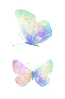 Wielokolorowy motyl akwarela. tropikalny owad do projektowania. na białym tle