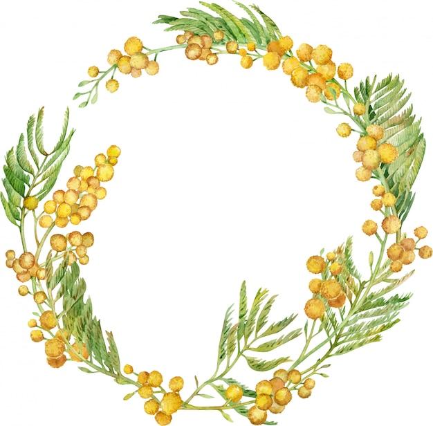 Wieniec akwarela mimozy. ramka kwiatowy wiosna żółty. ręcznie rysowane ilustracji.