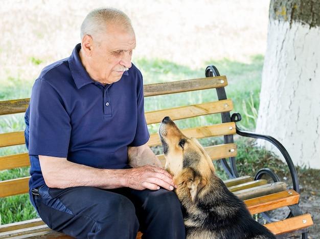 Wierny pies z pewnością siebie patrzy w oczy swojego pana. przyjazny stosunek do zwierząt