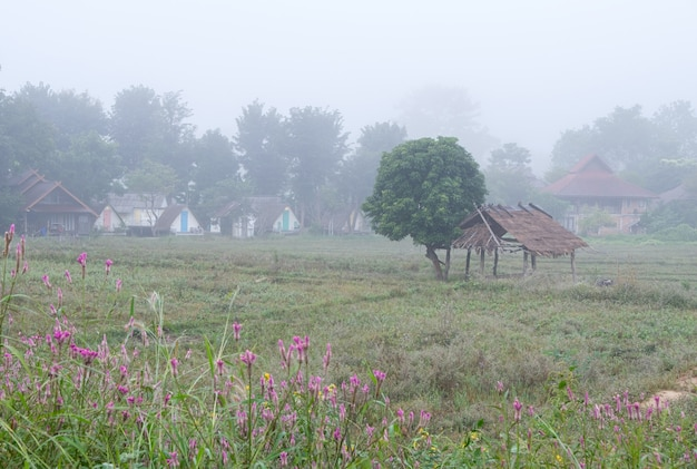 Wieś pokryta jest mgłą.