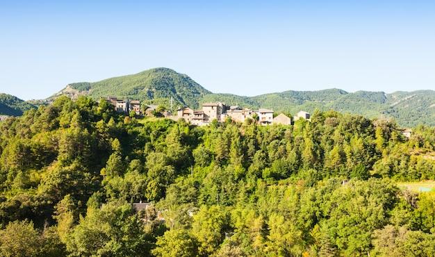 Wieś pyrenees w lesie. puyarruego