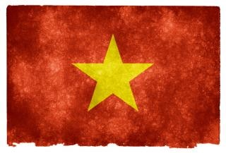 Wietnam grunge flag