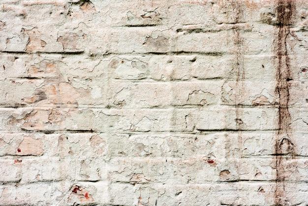 Wietrzejąca tekstura pobrudzony stary zieleni i bielu ściana z cegieł tło