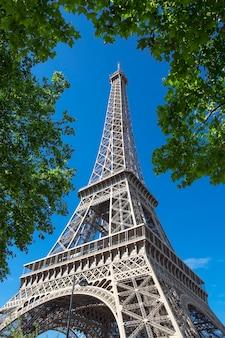 Wieża eifel z drzewem w błękitne niebo, paryż.