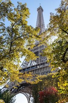 Wieża eiffla przez drzewa