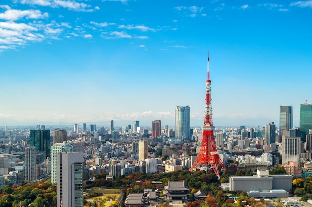 Wieża tokio, japonia - tokio city skyline i gród