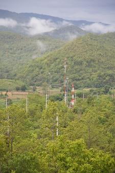 Wieże telekomunikacyjne w lesie