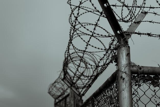 Więzienne Ogrodzenie Bezpieczeństwa Drut Kolczasty Ogrodzenie Ochronne Drut Brzytwy Więzienie Ogrodzenie Bariera Granica Premium Zdjęcia