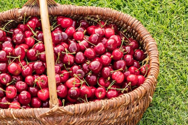 Wiklinowy kosz umieszczony na trawie i wypełniony pięknymi czerwonymi wiśniami