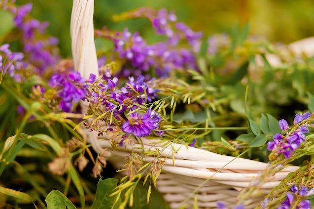 Wiklinowy kosz z kwiatami bzu na łące.