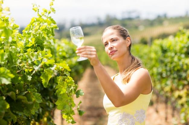 Winiarz gospodarstwa kieliszek do wina