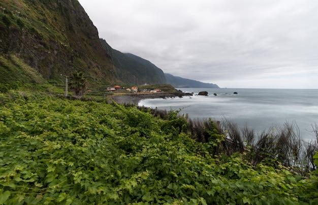 Winnica na wyspie madery