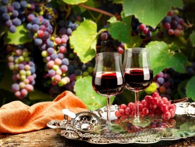 Wino o aromatach i smakach we wszystkich postaciach