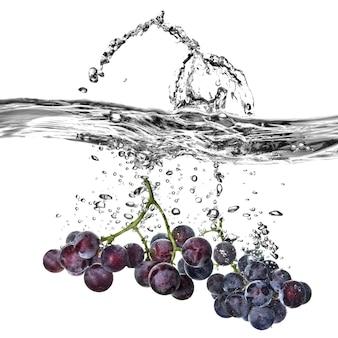 Winogron niebieski spadł do wody z pluskiem na białym tle
