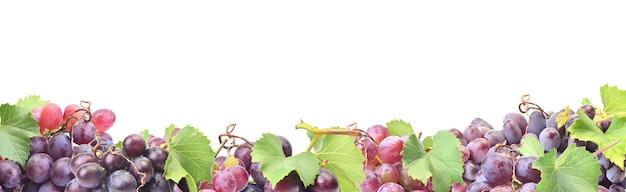 Winogrona na białym tle