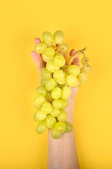 Winogrona są układane na dłoni. na żółtym tle. winogrona wolumetryczne. kilka zielonych krzewów winogronowych. leżał płasko