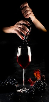Winogrona, wino i winiarstwo.