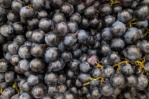 Winogrona z bliska. odmiana świeżych winogron uprawianych w sklepie.