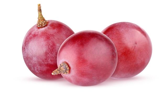 Winogrono na białym tle. czerwone winogrona na białym tle na białym tle ze ścieżką przycinającą. pęczek trzech całych jagód.