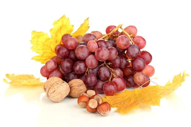 Winogrono z nutsd na białym tle
