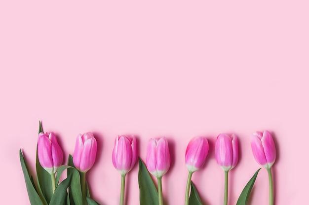 Wiosenna karta w tle różowe tulipany w pastelowym różowym tle zbliżenie świeże kwiaty na poziomą tapetę kwiatową plakatową lub pocztówkę wielkanocny baner z życzeniami kopiowanie miejsca