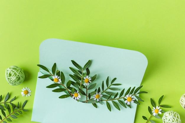 Wiosenna kompozycja z kopertą i zielonymi kwiatami. 8 marca. widok z góry