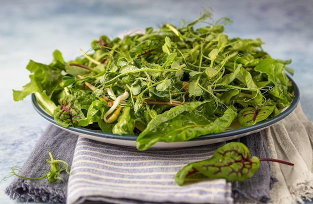 Wiosenna lub letnia sałatka z zielonej mieszanki detox z mikrozielonymi koncepcja żywności wegańskiej