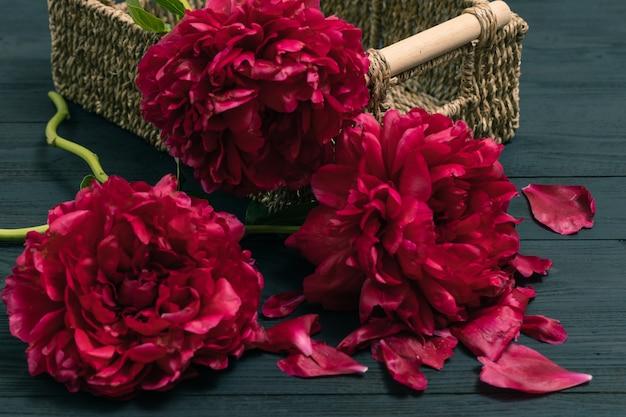 Wiosenna piwonia kwiatowa. szczęśliwego dnia matki. kartka z życzeniami na dzień matki. prezent na dzień matki