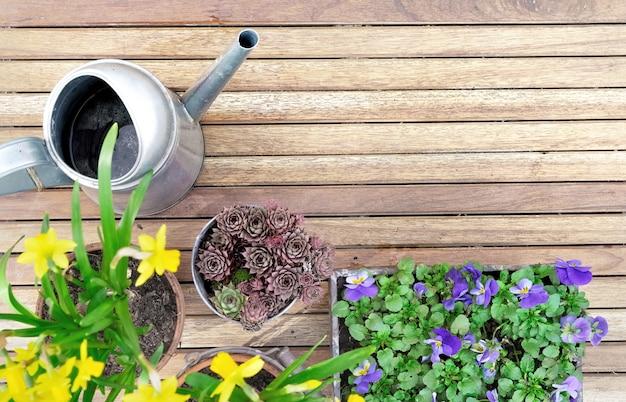 Wiosenne doniczki na drewnianym tarasie