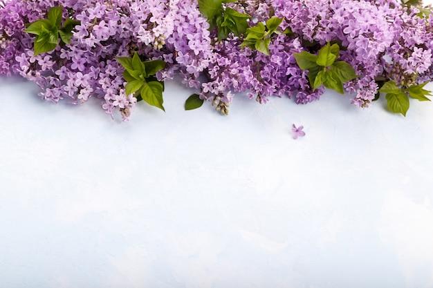 Wiosenne kwiaty bzu