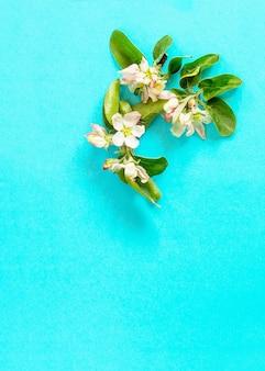 Wiosenne kwiaty jabłoń na niebieskim tle minimalna koncepcja wielkanocna