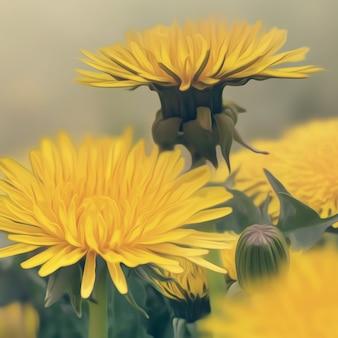 Wiosenne kwiaty mniszek z bliska. efekt malarstwa olejnego.