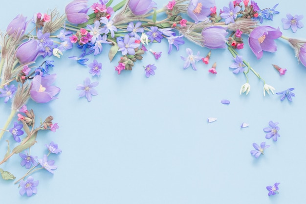 Wiosenne kwiaty na niebieskim tle
