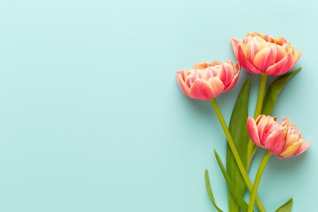 Wiosenne kwiaty. tulipany w pastelowych kolorach kartkę z życzeniami retro styl vintage. dzień matki, wielkanoc kartkę z życzeniami.