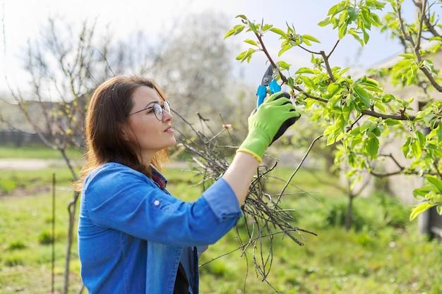 Wiosenne ogrodnictwo, kobieta ogrodniczka w rękawiczkach z sekatorem przycinająca suche gałęzie na drzewie, tworząc grusza. hobby, ogrodnictwo, koncepcja farmy
